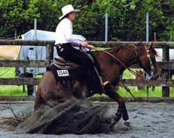 Sliding stop in reining class
